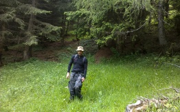 Christian inspiziert einen Waldameisenhaufen