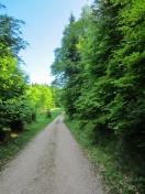 HInweg 1