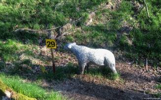 Ziel 29: weisser Bär im Spot